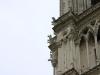 Gargoyles an Notre Dame
